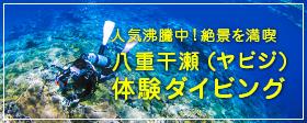 八重干瀬体験ダイビング